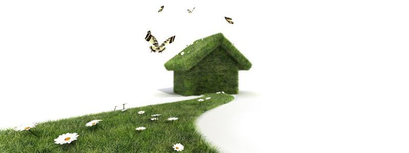 écologie de l'habitat